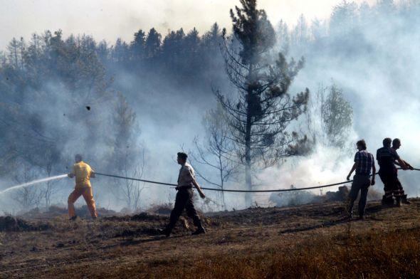 Karabükte orman yangını