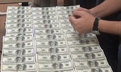 Dolarlar Nereden Çıktı?