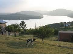 Trabzonda göç mevsimi başladı