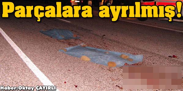 Muğla Milasta parçalanmış kadın cesedi