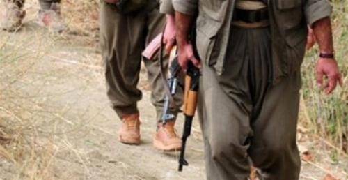 Ölen PKKlıları Nüfusa Şehit Yazmışlar