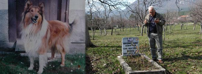 Köpeğinin mezarı başında dua okuyor