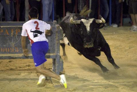 İspanyanın katil boğası Raton öldü