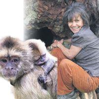 Ormanda 5 yıl maymunlarla yaşadım