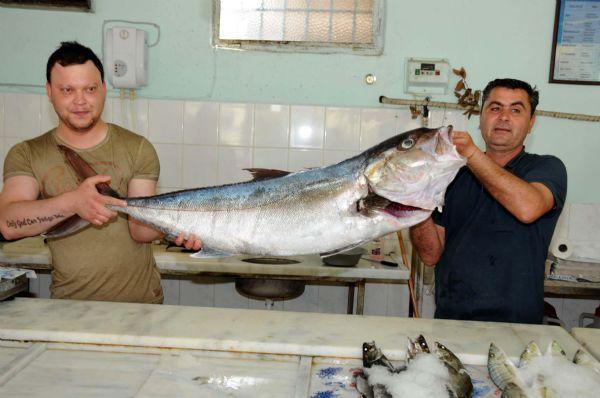 25 kiloluk Akya balığı pastırma olacak