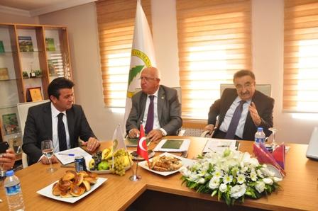 Ankara B. Belediyesi ODTÜdeki ağaçları nereye nakletti?
