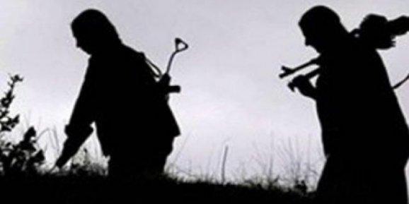 Diyarbakırın Lice İlçesinde PKKlılar yol kesip 4 askeri kaçırdı