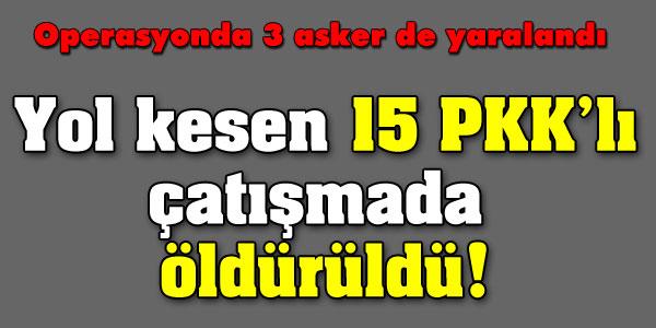 Yol kesen 15 PKKlı çatışmada öldürüldü