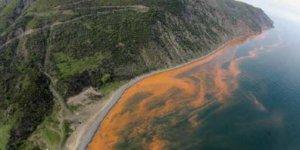 Marmara Denizindeki Felaket Ne Olabilr?