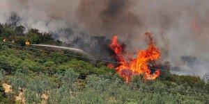Orman Yangınlarının Yüzde 98i İnsan Kaynaklı
