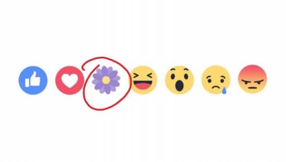 facebook-mor-cicek-simgesi.jpg