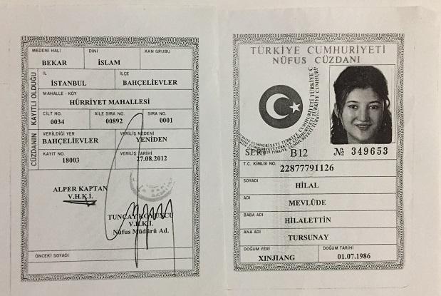 mevlude-hilal-turkistan-resim-012.jpg